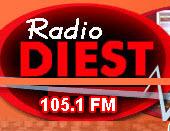 Radio Diest 2014